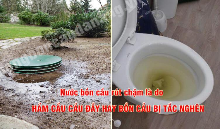 cach-phan-biet-ham-cau-day